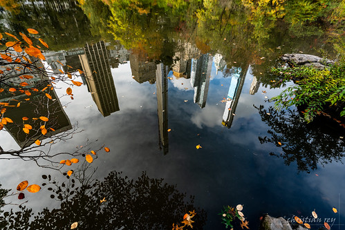 city nyc newyork automne buildings centralpark sony alpha reflets refections atumn a7r2 park 1635 a7rii usa