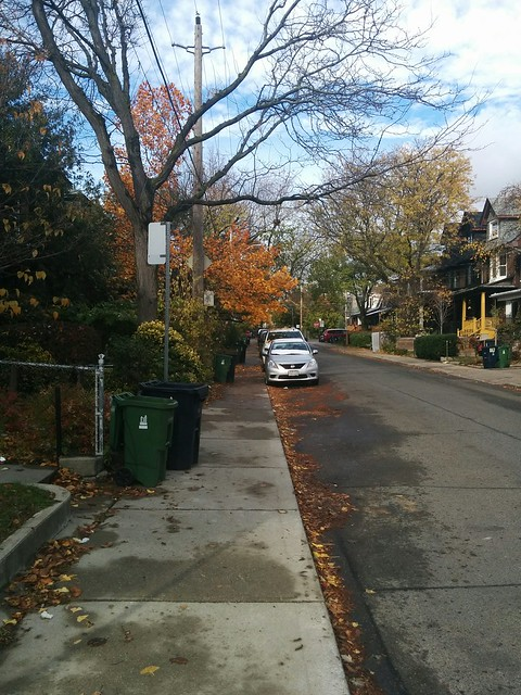 North on Palmerston #toronto #seatonvillage #palmerstonave #fall #autumn
