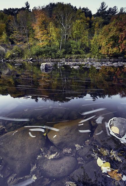 River Rock Reflection (2877) 2