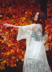 The Forest Fairy Raises