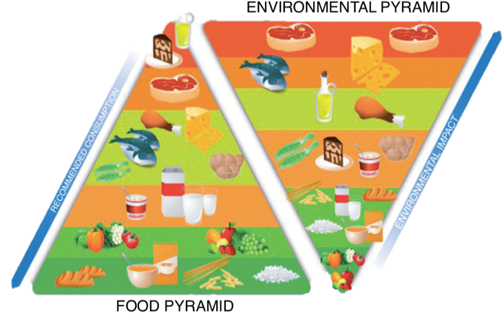 食物金字塔頂端部分建議吃愈少愈好,像是蛋糕、油、紅肉等等。對環境危害來說,也是加工製品、油、紅肉等等,有更多的碳排放量。 來源:Alsaffar, Sustainable diets: The interaction between food industry, nutrition, health and the environment