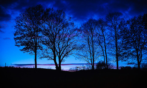 blue hour trees nassau new york upstate fence farm light dusk clouds silhouette outdoors rgrennan rwgrennan ryan grennan nikon d610 landscape sky ny nys rensselaer county fall autumn november