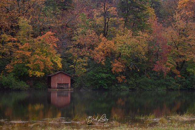 Alabama Autumn