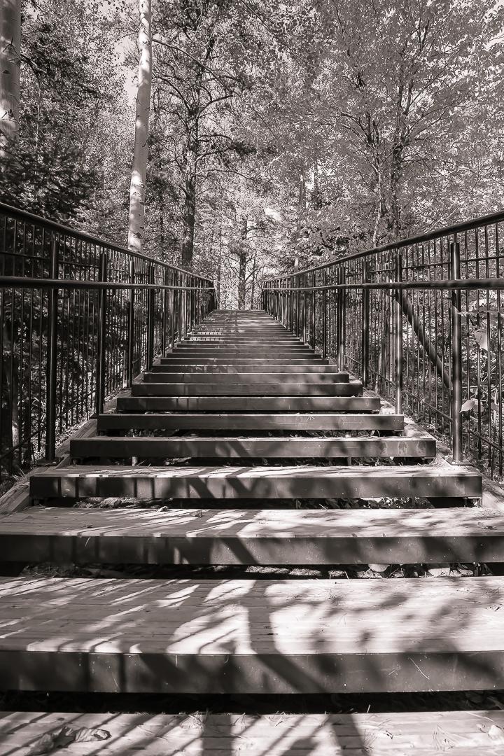 L'escalier mystérieux