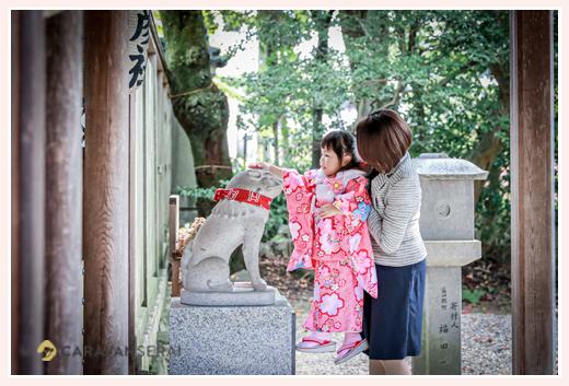 七五三 神社で狛犬の頭をなでる3歳の女の子