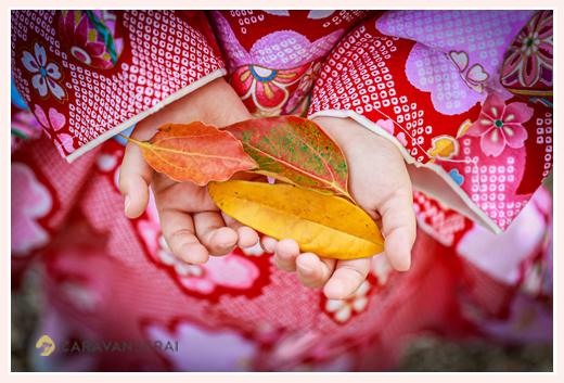 七五三のロケーションフォト 色づいた葉っぱを手にもつ女の子 手元