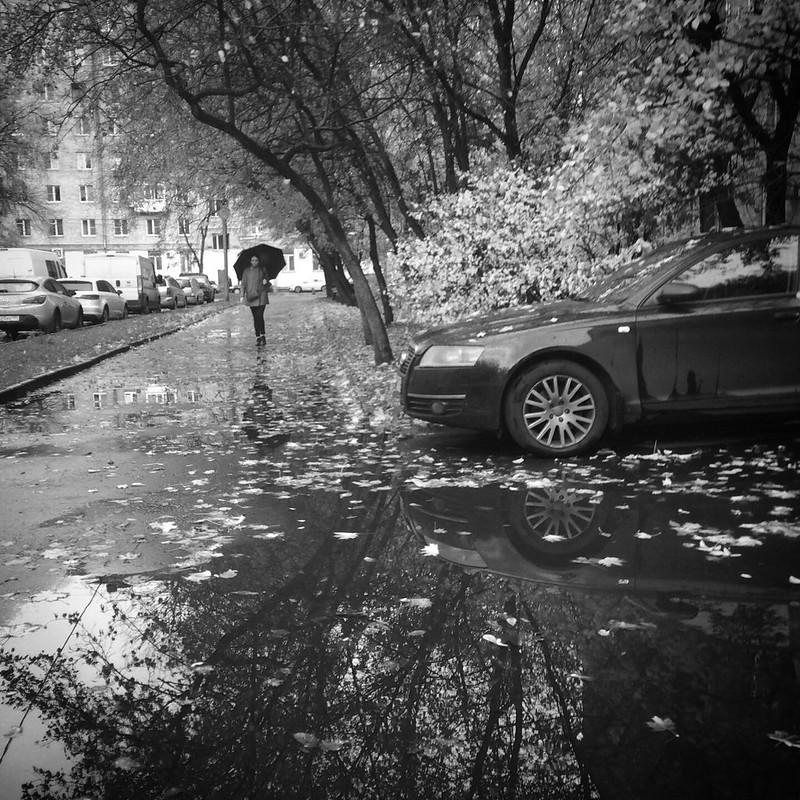 Осень на Соколе
