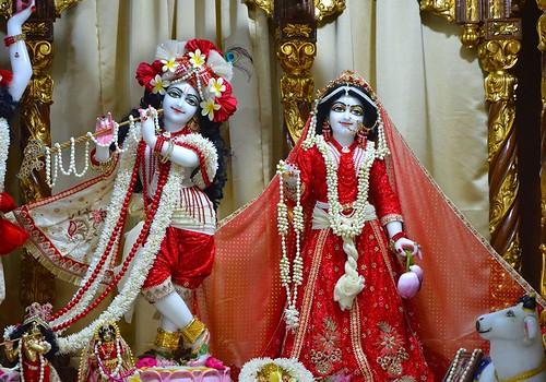 ISKCON Bangalore Deity Darshan 08 Nov 2019