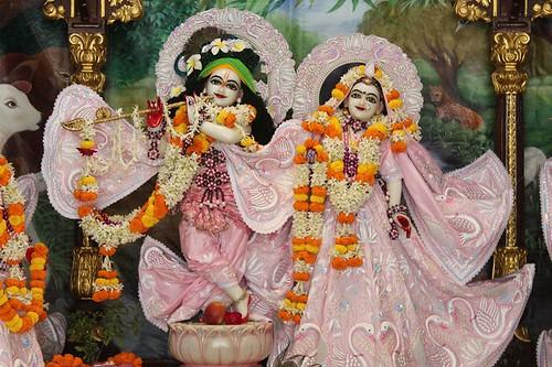 ISKCON Kanpur Deity Darshan 08 Nov 2019