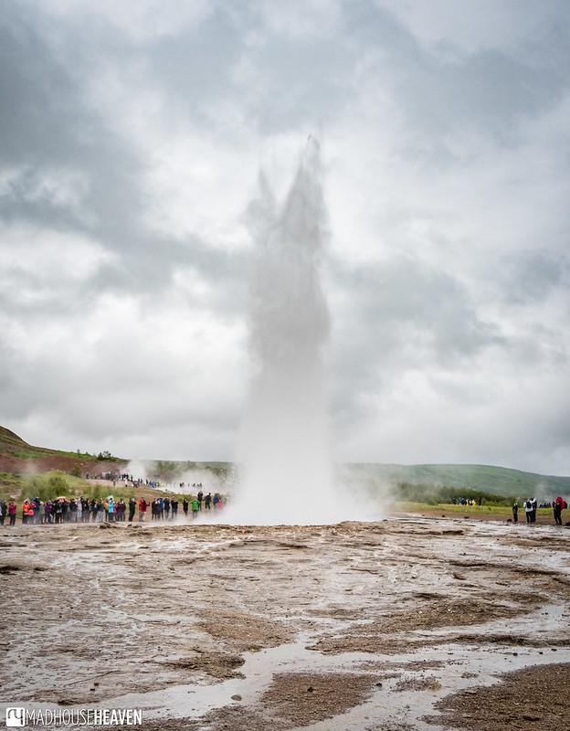 Iceland - 6139