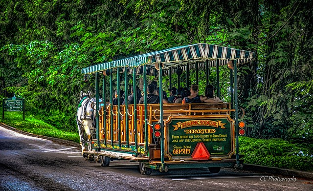 Horse-Drawn Carriage  Tour - Stanley Park, Vancouver, BC Canada