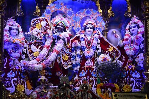 ISKCON Ujjain Deity Darshan 08 Nov 2019