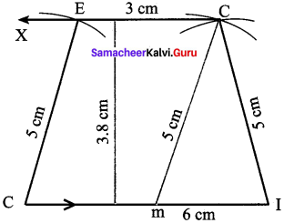 Samacheer Kalvi 8th Maths Solutions Term 2 Chapter 3 Geometry Ex 3.3 16