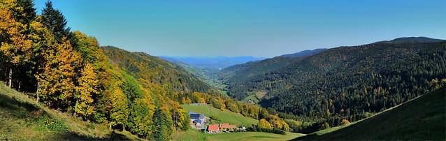L'automne , saison des couleurs chatoyantes  -  Autumn , season of shimmering colors