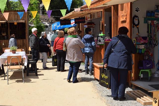 Adultos Mayores de Conchal� disfrutan de las bellezas y destinos tur�sticos de Coltauco