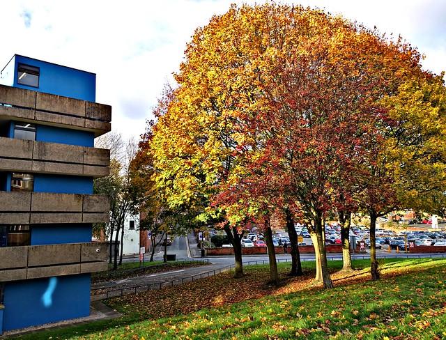 Autumn colour at the Avenham car park in Preston