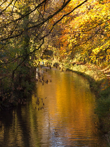 Autumn in Wales :) (kasia_ociepa)