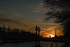 November sun (week 45)