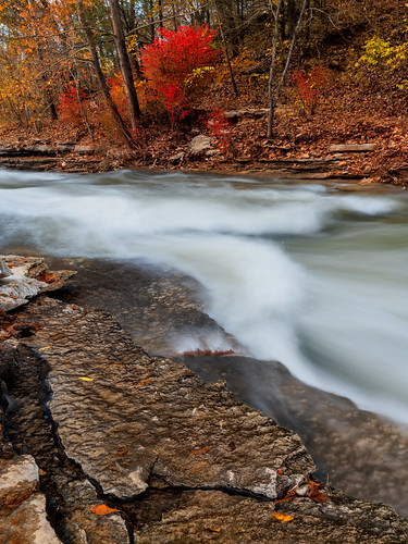 arkansas landscape tanyardcreek bellavista rain water fall autumn fallfoliage northwestarkansas rocks