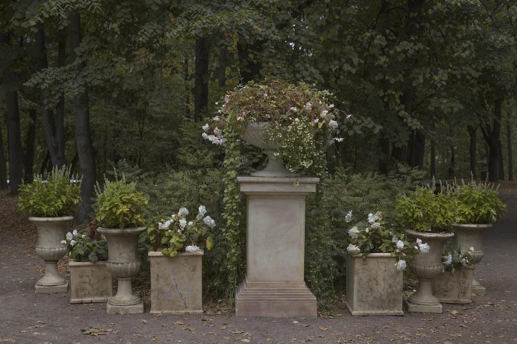 Нескучный сад_1