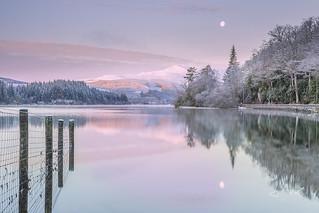 Pink Dawn Loch Ard