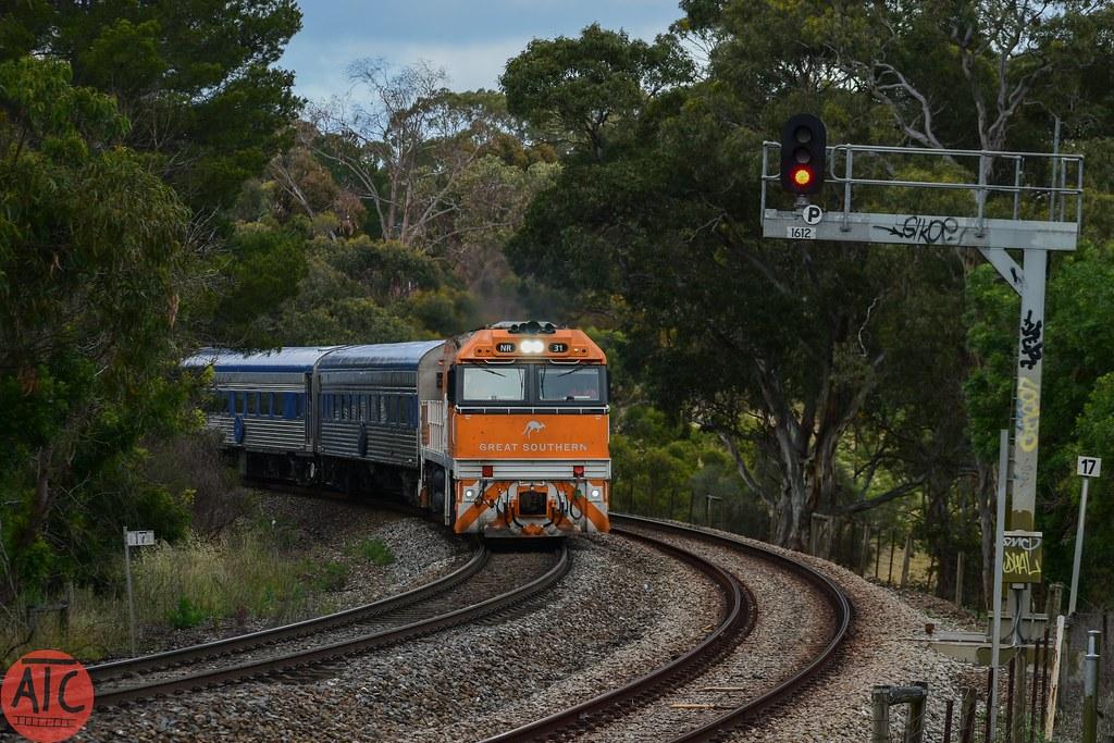 NR31 #6AM8 at Coromandel  08/11/19 by Alex's Train Channel
