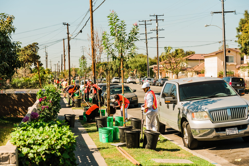 TreePeople - Teams For Trees - SummitLA and Treedom - Cudahy