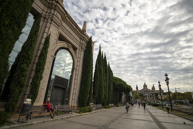 Avinguda de la Reina Maria Cristina - Barcelona, Catalonia, Spain