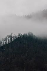 Cloudy  (由  John Cobalt Photography