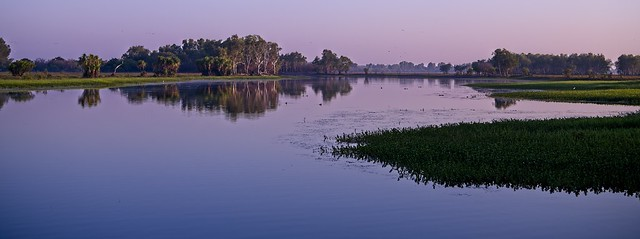 South Alligator river at sunrise