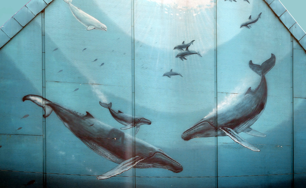 Whaling Wall of Toronto