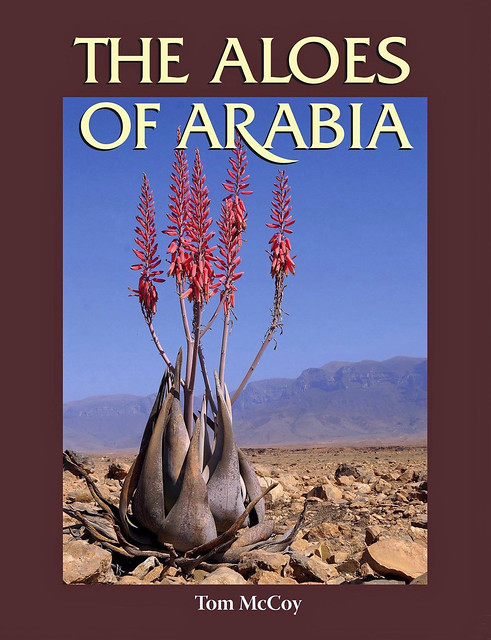 The Aloes of Arabia by Tom McCoy