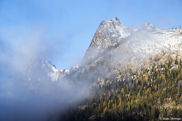 Fog in the North Cascades