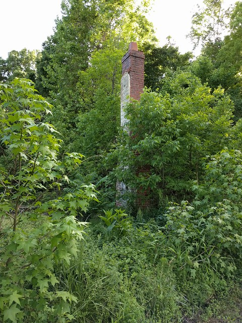 Virginia - Abandoned Chimney