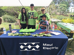 Maui Electric at the 2019 Arbor Day Expo and Tree Giveaway — Nov. 2, 2019: Volunteers passed out free emergency preparedness handbooks and reusable bags!