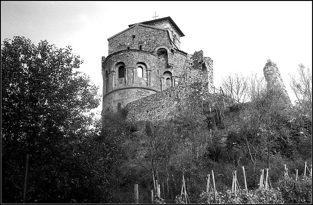 Saint Romain le Puy   Zorki 1   Jupiter 8  XP2 D76    (9)