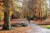 Autumn by Wouter van Wijngaarden