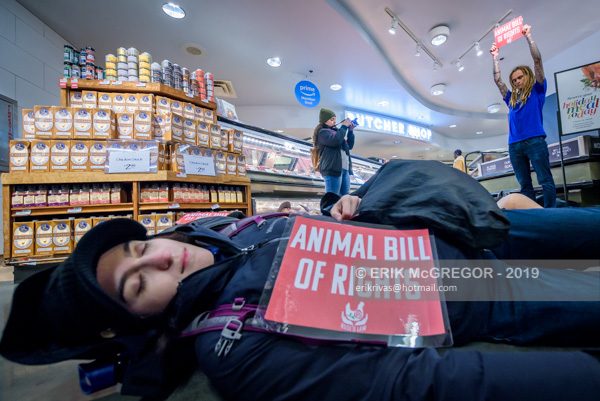 Animal Bill of Rights Die-In protest at Whole Foods