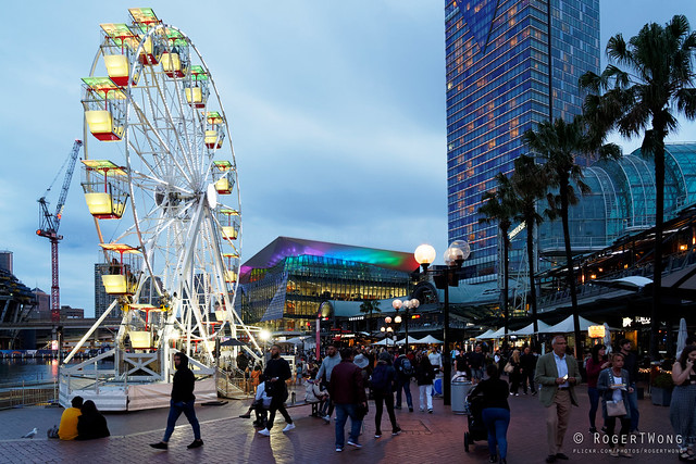 20191109-32-Crowds at Darling Harbour