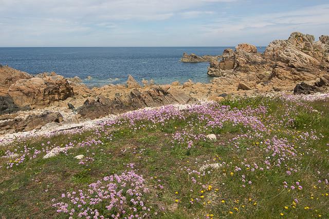 Île de Bréhat (Bretagne)