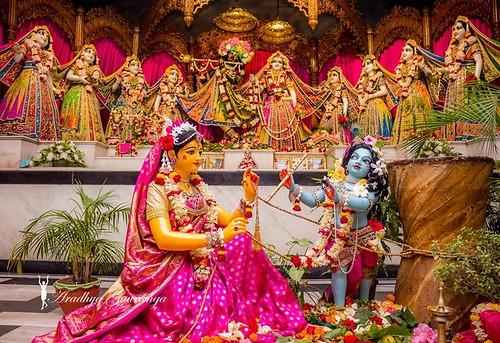 ISKCON Mayapur Deity Darshan 09 Nov 2019