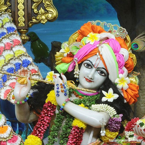 ISKCON Chowpatty Deity Darshan 09 Nov 2019