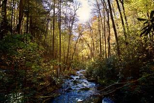 Autumn Splendor. Helen, Ga