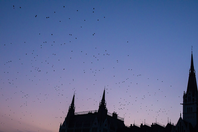 Sunset Over Parliament, Budapest