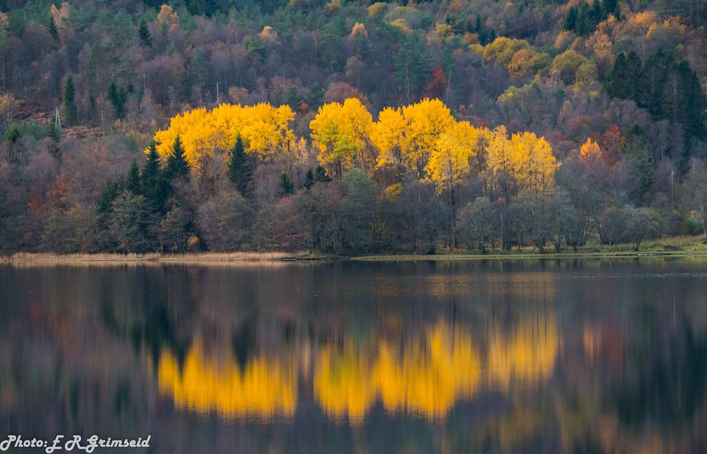 Autumn . Kalandsvatnet ( 1 )