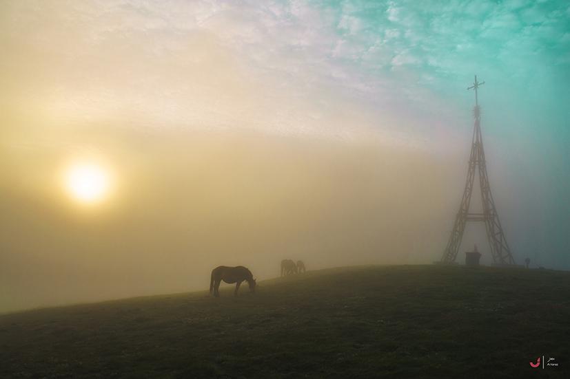 Una mañana de soledad