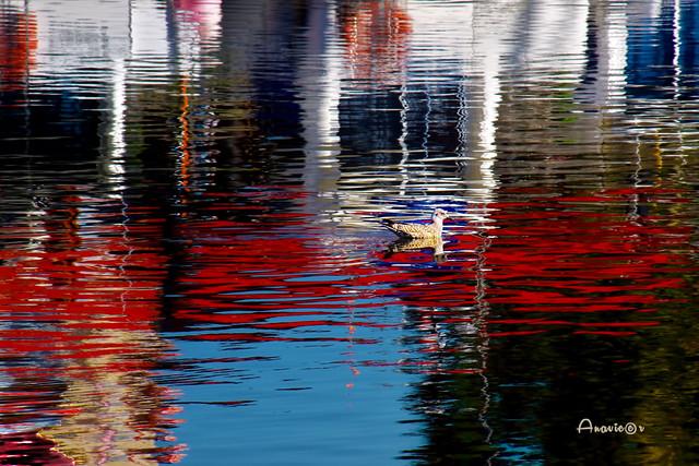 09_Reflejos y colores