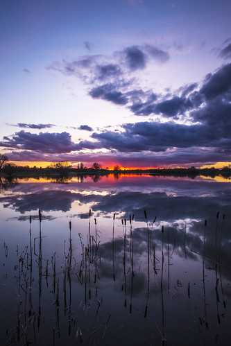 canon6d nature outdoors outside sky clouds reflection colour landscape waterscape reeds lake water uk cambridgeshire sunset