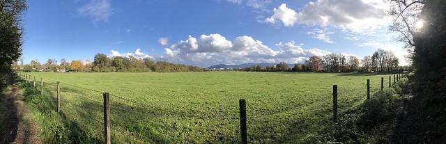 Freiburg-Rieselfeld: Autumn