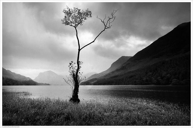 Diminutive / Lake Buttermere, Lake District, UK